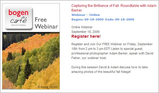 Bogen Fall Foliage Webinar