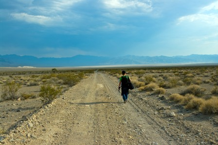 Desert Walk - Image Credit BVDC Stock Photography