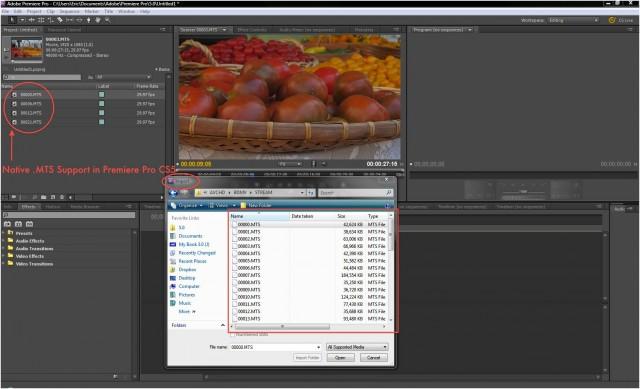 Premiere Pro CS5 MTS Import