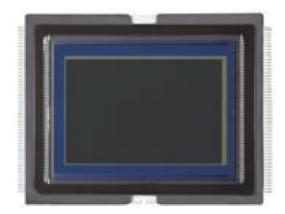 Canon 1D X Sensor