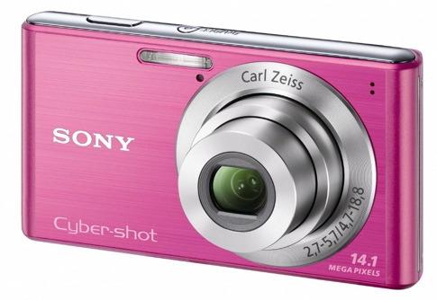 Sony W530