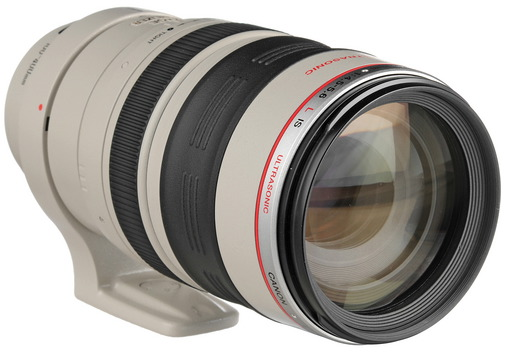 Canon 100-400mm L Lens