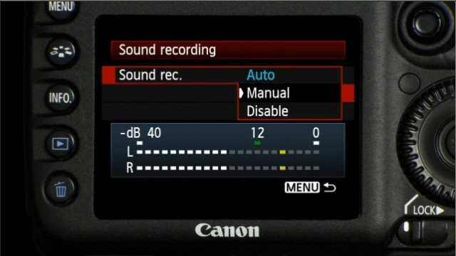 Manual Audio Levels 7D
