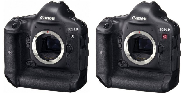 Canon 1D X and 1D C