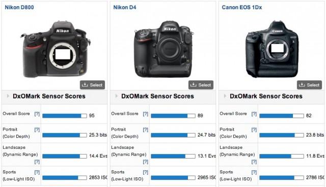 Canon 1D X vs Nikon D800