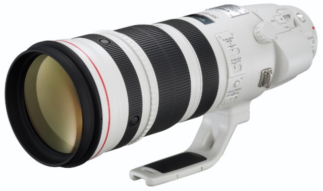 Canon EF 300-600mm f/5.6 with 1.4x Teleconverter Lens Patent Surfaces