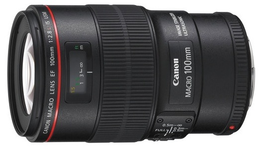 Canon 100mm Macro IS Lens