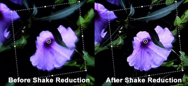 Shake-Reduction-Sample-640x293