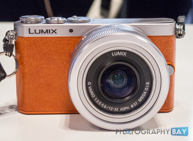 Panasonic Lumix GM1-10