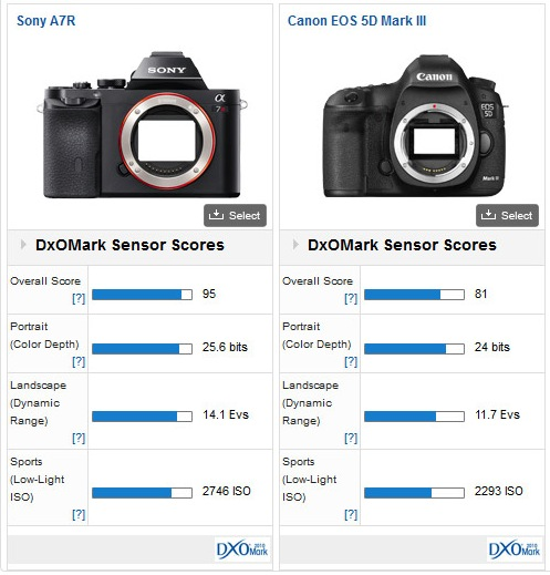 Sony A7R vs Canon 5D Mark III