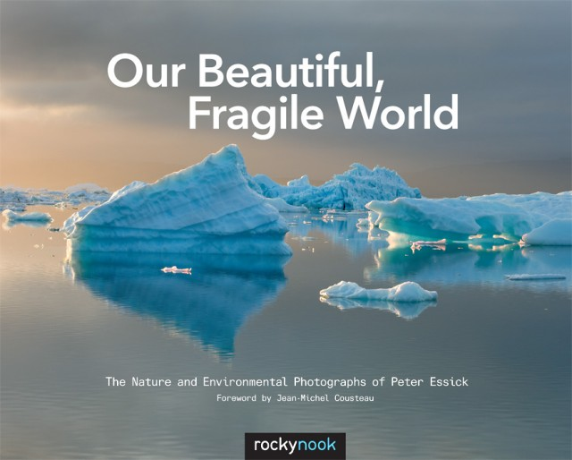 Our Beautiful Fragile World