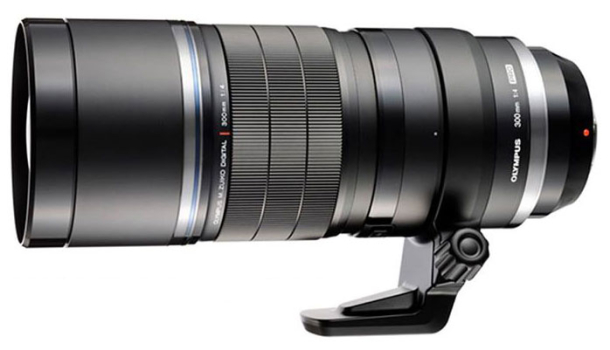 Olympus 300mm f4 PRO