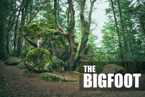 Bigfoot_image_copy_grande