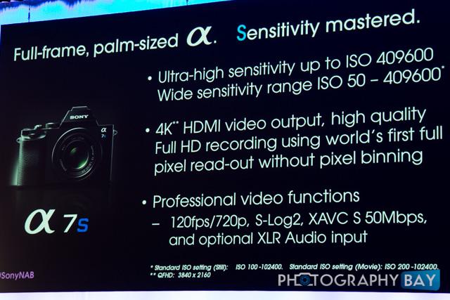 Sony A7s-8