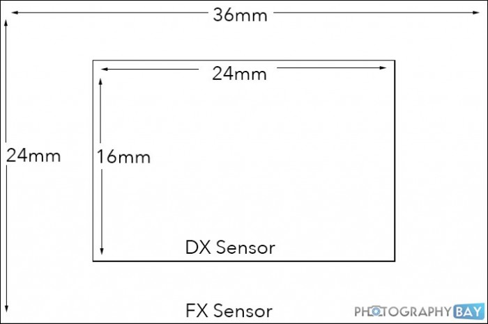 What is the Difference Between Nikon DX and FX Lenses?