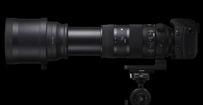 Sigma 150-600mm Lens 2