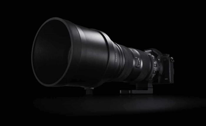 Sigma 150-600mm Lens
