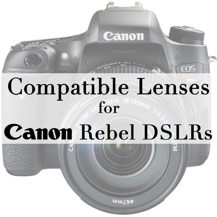Compatible-Lenses-for-Canon-Rebel-DSLRs