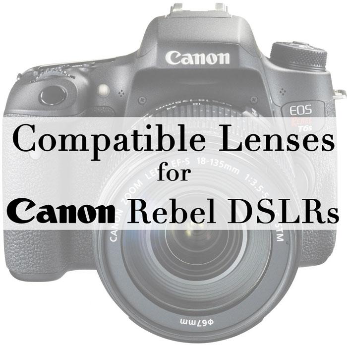 Compatible Lenses for Canon Rebel T3i, T4i, T5i, T6i, T6s ...