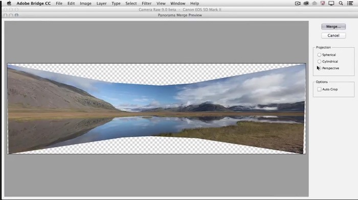 Camera Raw 9 Screenshot