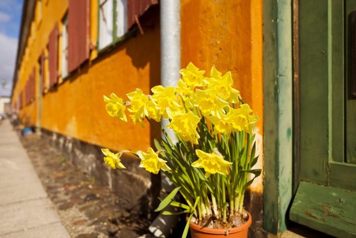 Leica Q Sample Images-18