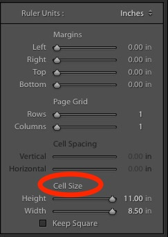 Step 5 - Cell Size