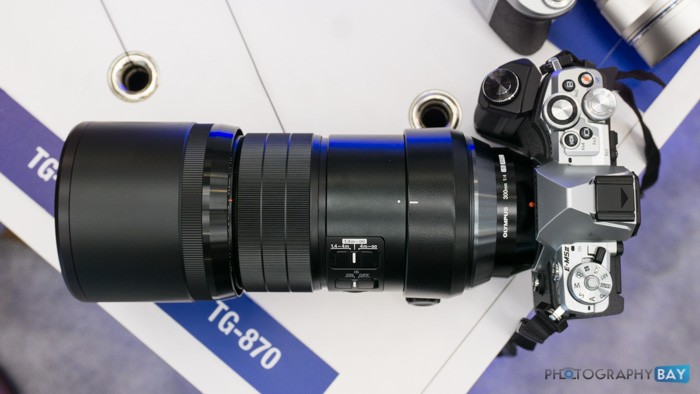Olympus 300mm f4 PRO Lens-6
