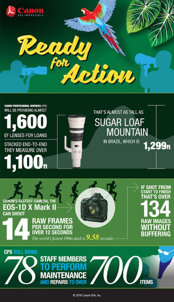 CAM.12132 Summer Olympic Infographic_D3_sh