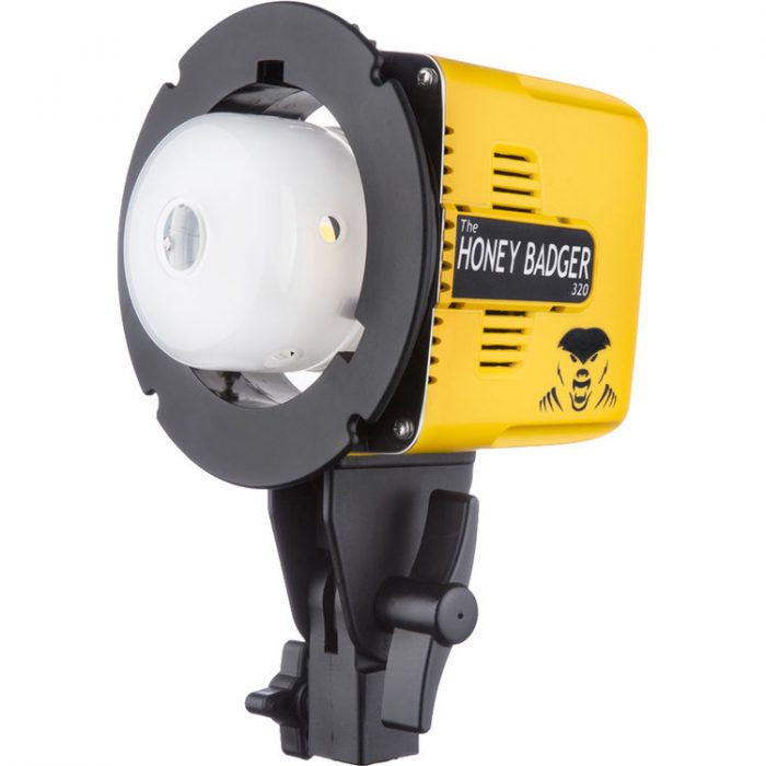 Deal: Interfit Honey Badger 320Ws Compact Flash Head for $189